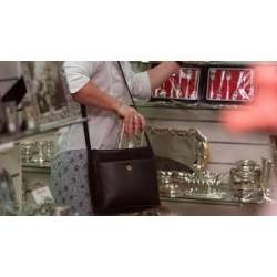 Shoplifting & Larceny 8hr