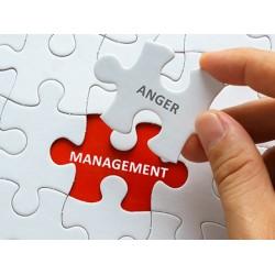 Anger Management 12hr